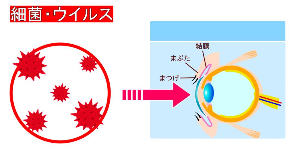 細菌性結膜炎・ウイルス性結膜炎